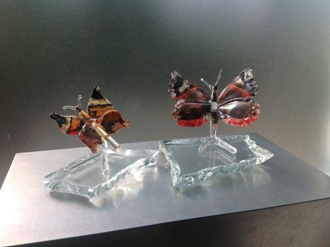 Glazen-Vlinders